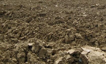 landbouwgrond1
